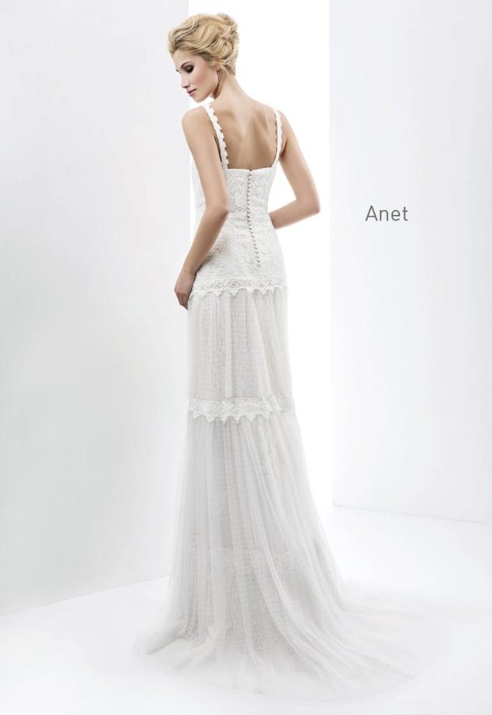 Anet2